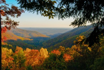 North Georgia fall foliage