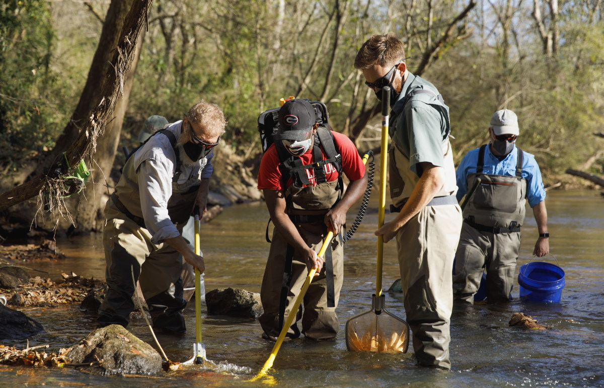 UGA crew searches for weather loaches in McNutt Creek near Athens (Andrew Davis Tucker/UGA)