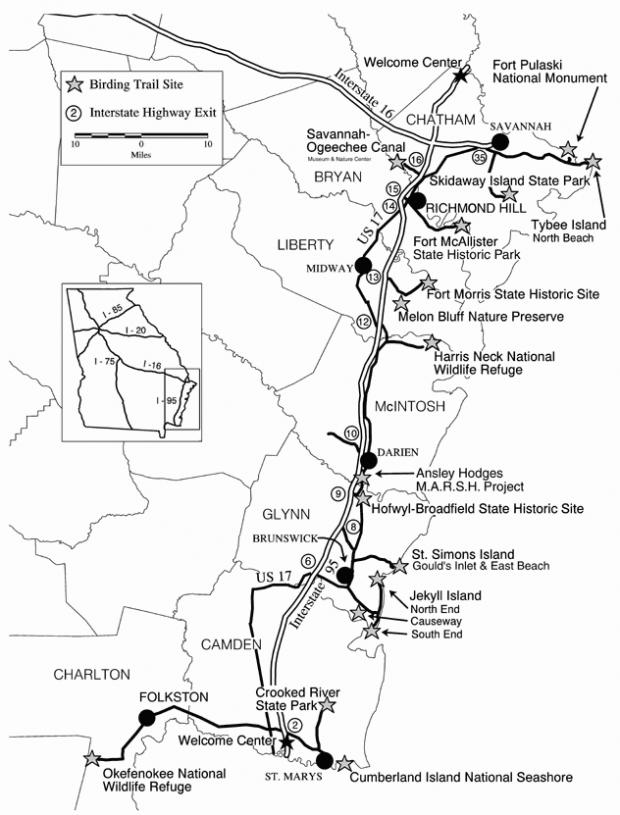 Altamaha Wildlife Management Area-Butler Island West of I