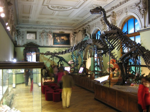 Geology And Mineralogy Museums In Europe Geoscience
