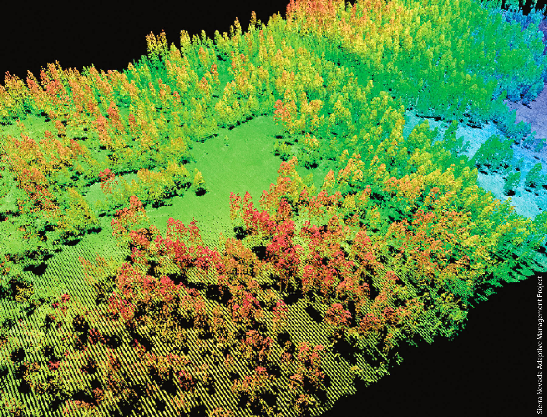 Maharashtra forest department to use remote sensing to