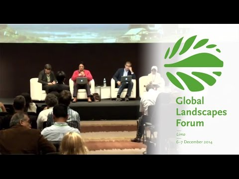 Making Forest Information Systems Work for REDD+ and Beyond