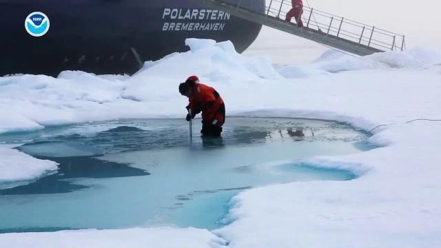 Arctic Report Card 2018
