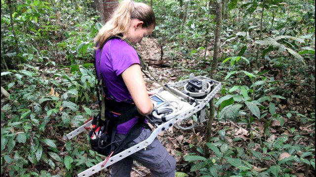 Measuring Forest Structure through a Lidar Lens