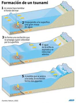 formacion tsnumi terremotos