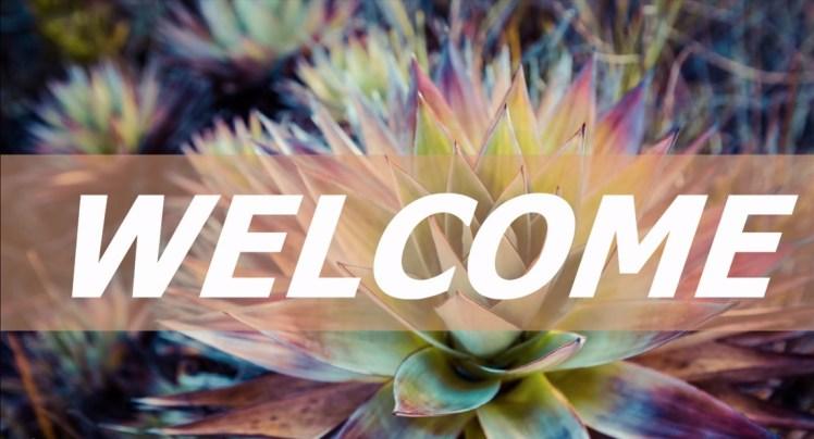 Welcome in Scottsdale Arizona