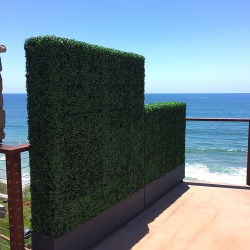 Residential Hedges