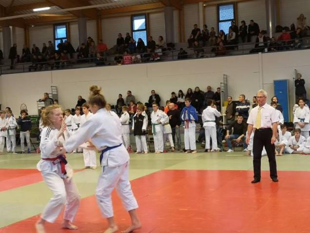 judo tournoi de gérardmer 2019 (9)