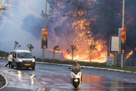 haifa-en-feu