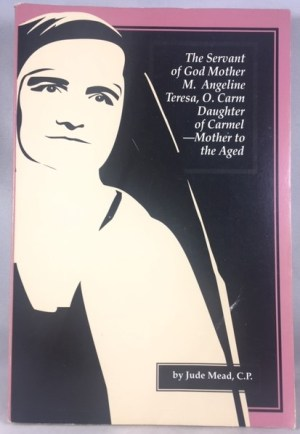 The Servant of God Mother Mary Angeline Teresa, O. Carm: Daughter of Carmel, Mother to the Aged
