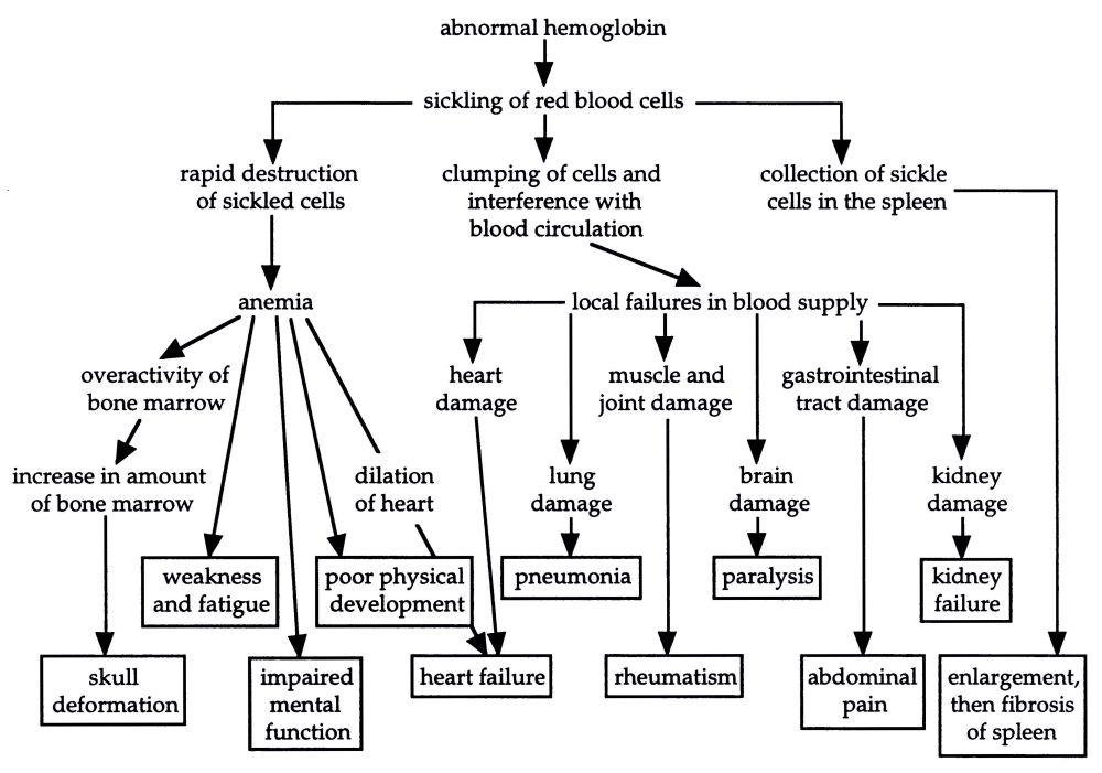 medium resolution of causes