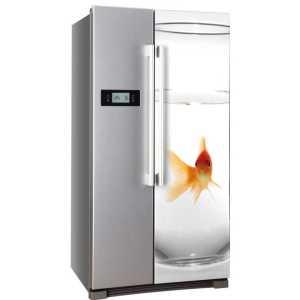 Sticker koelkast goudvis