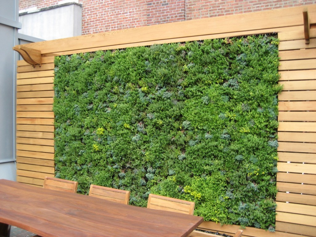 Begrunte Wand Selber Machen Garten Sichtschutz Aus