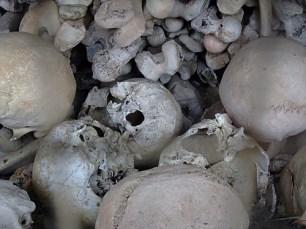 KULTURFORUM Skull & Bones (8)