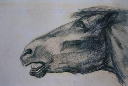KULTURFORUM Franz Marc Kopf eines toten Pferdes 1907-08