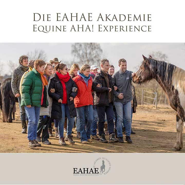 Die EAHAE Akademie: Großgruppen-Events