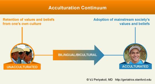 Acculturation Continnum