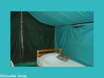 safari tent_new