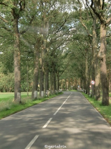 075-allee_new