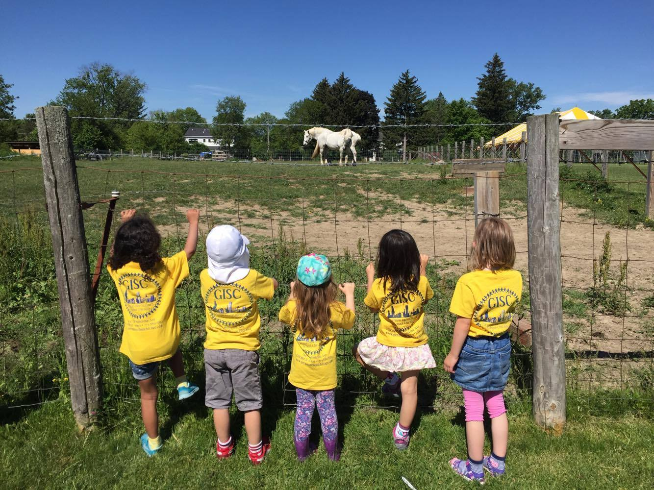 Preschool Field Trip To The Farm German International