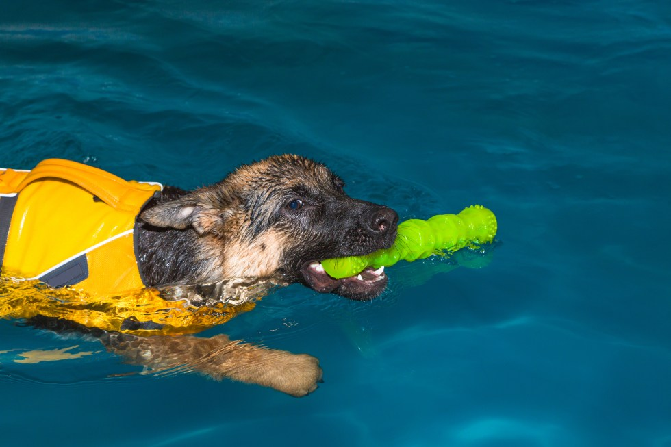 GSD fetching in pool