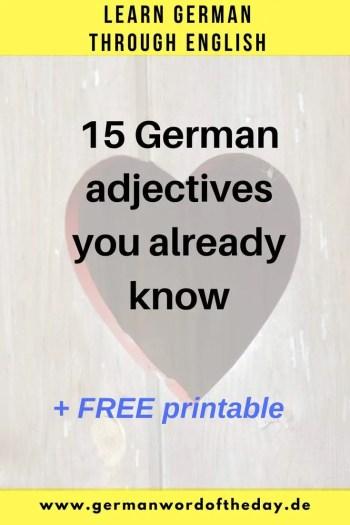 German English true friends 15 same adjectives