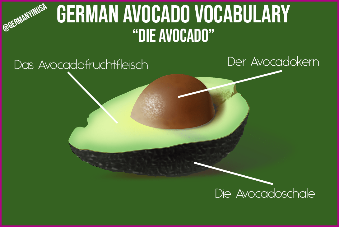 11 German avocado words and phrases you need to make guacamole