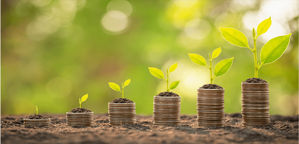International cooperation on green finance: a virtual event