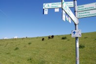 signpost in Ostfriesland
