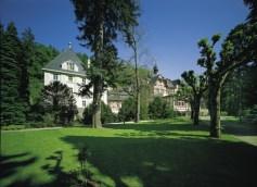 Hotels in Germany: Ayurvedic hotel Parkschlösschen in Traben-Trarbach, Moselle