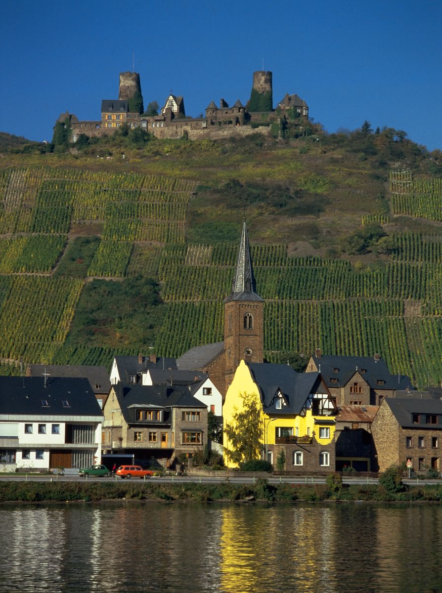 Wine in Germany: Moselle wine region