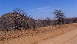 botswana-010