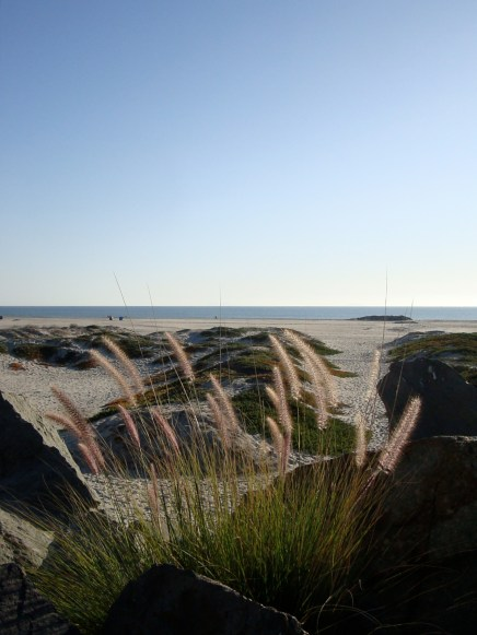 Coronado Island, CA
