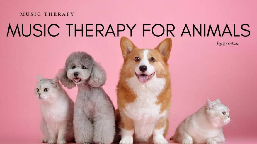 Music Therapy for Animals