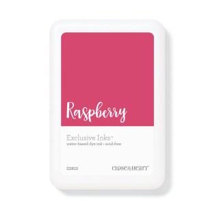 raspberry ink
