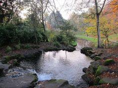 Upper Brook 5