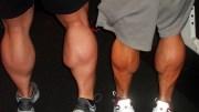massive-calves