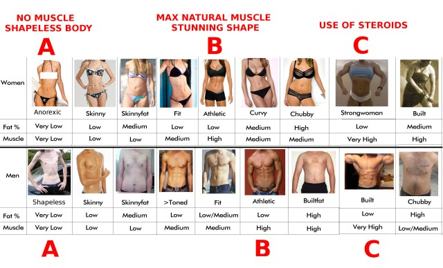 body-typesC