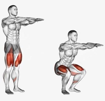Body squat
