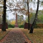 Birch Trees in Front of the Soviet Memorial, Marzahn
