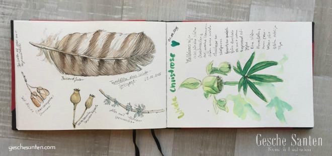 Natur und Erinnerungen im Skizzenbuch