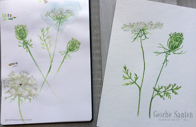 Blumen malen in Aquarell - Wildblumen malen - Botanisches Skizzenbuch