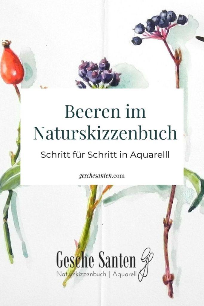 Beeren und Früchte in Aquarell - Hecken im Naturskizzenbuch