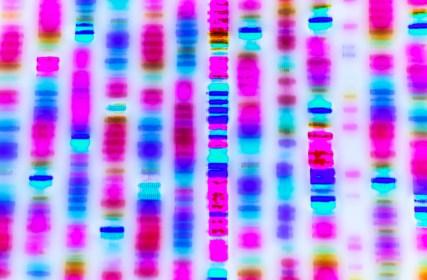 Biologisierter Antirassismus. Wie DNA-Ethnizitätstests ein falsches Verständnis des modernen Rassismus (re)produzieren