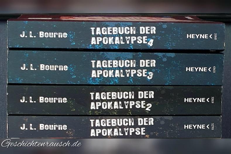 Tagebuch der Apokalypse 1 - 4 Book Cover