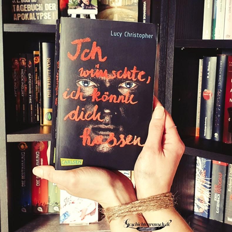 Ich wünschte, ich könnte dich hassen Book Cover