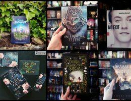 Meine Bücher-Highlights 2020