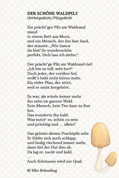 DER SCHöNE WALDPILZ