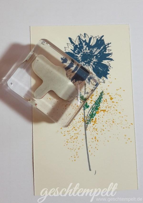 Stampin up, Verwendung von Stampin Glitter, Anleitung in Bildern, Tutorial, Touches of Texture, Landlust, Cottage Greetings