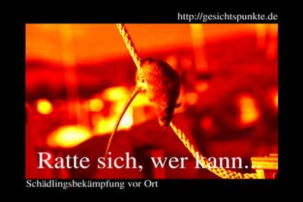 Banner Schädlingsbekämpfung - Ratte sich, wer kann!